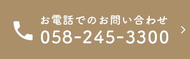 058-245-3300