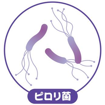 ピロリ菌(ヘリコバクターピロリ)感染症とは